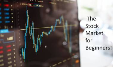 The Stock Market for Beginners!!!