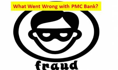 What Went Wrong with PMC Bank?
