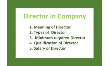 Director in Company
