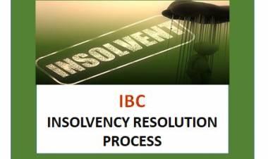 Insolvency Resolution Plan - Understanding of Process